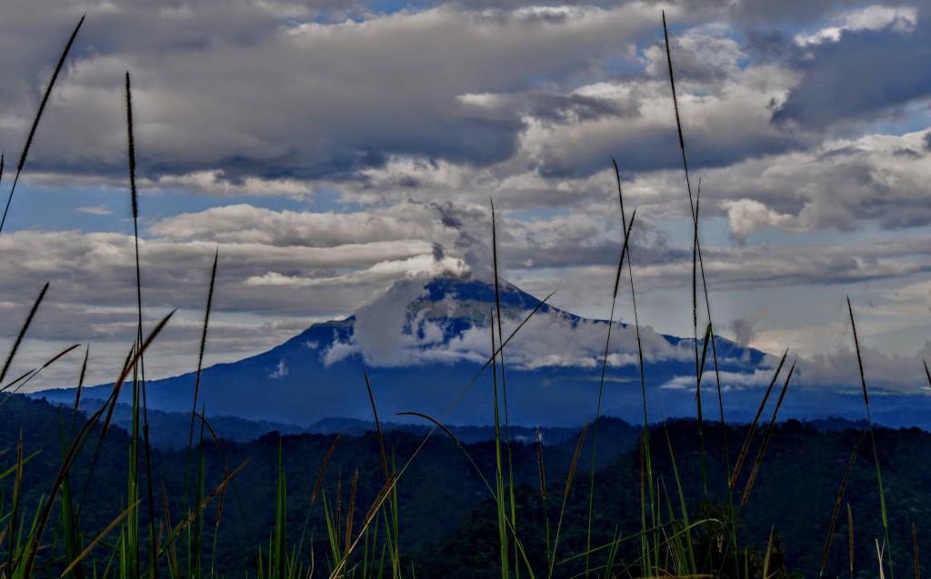 Sumaco National Park